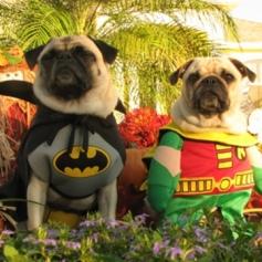 Así nos gusta, respetando a los clásicos. Estos héroes son Hanna-Barbera en estado puro.