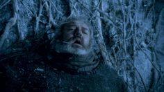 El pobre Hodor se lleva un 2x1 en sufrimiento a la hora de morir en la serie de la HBO. No sólo le vemos ser destrozado por los caminantes blancos, es que encima, a la vez nos enseñan la traumática historia de cómo quedó incapacitado para decir nada más que una sola palabra el resto de su vida. Bran, te queremos, pero ya podías haber dejado al pobre Willys tranquilo.