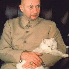 El gato de Blofeld - Sólo se vive dos veces