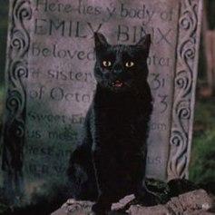 Thackery Binx - El retorno de las brujas